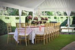 Pink & Gold Long table