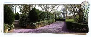 Evergreen Garden Venue About
