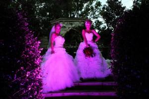 Evergreen Garden venue, Evergreen Wedding venue, Fairy Tales, Secret garden