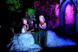 Evergreen Garden venue, Evergreen Wedding venue, Fairy Tales